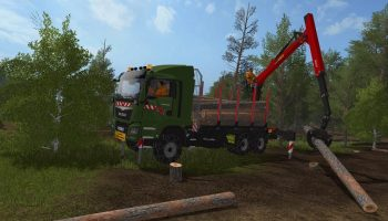 MAN TGS 41480 6X4 Palfinger Grumier для Farming Simulator 2017