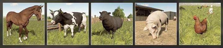Сельскохозяйственные животные | Животноводство в Farming Simulator 19