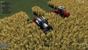 Saphir Stego Roller v1.0.1.0 FS19 для Farming Simulator 2019